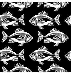 Fishes ocean vector