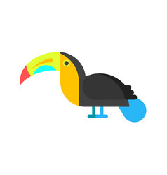 flat style toucan vector image