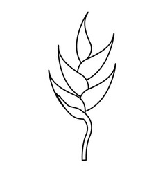 Heliconia tropical natural thin line vector