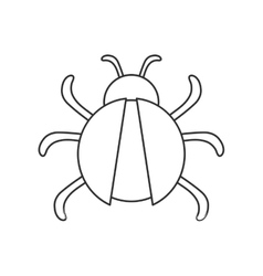 Isolated bug insect design vector