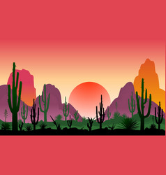landscape of rocky desert with cacti vector image