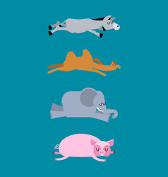 Sleeping animals set 4 donkey and elephant camel vector