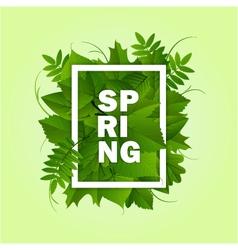 Spring frame background vector
