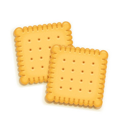 Two delicious biscuit vector