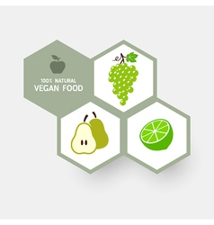 Vegan concept with fruit icons vector image vector image