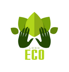 eco logo healthy organic food label emblem for vector image