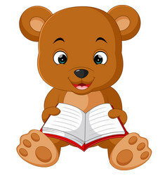 cute bear reading book cartoon vector image