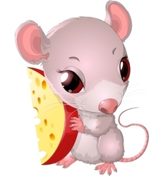Cute mouse holding cheese vector image