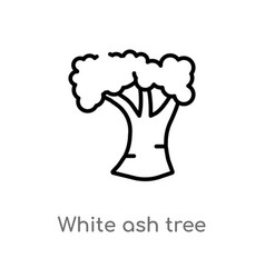 Outline white ash tree icon isolated black simple vector