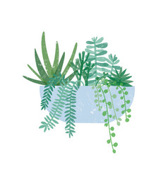 trendy potted houseplant flat vector image