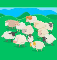 flock of sheep cartoon vector image