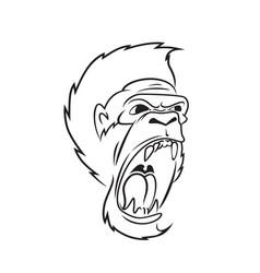 gorilla line art vector image