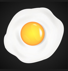 fried eggs omelet in cartoon style vector image