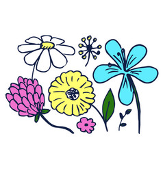 set cute colorful flowers vector image