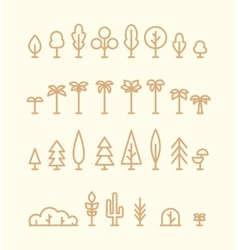 Set kinds trees palms fir spruces bushes linear vector image