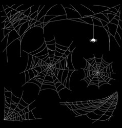 set of cobweb isolated on dark background vector image