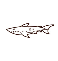 shark swim graphic vector image