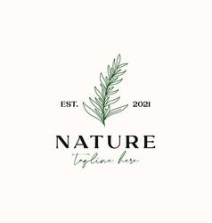 Tea tree monoline vintage hipster logo template vector