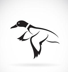 Wild duck vector image