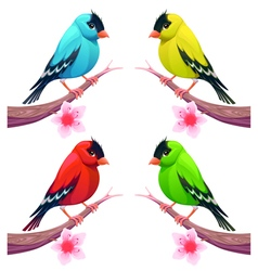 Group of birds in different color tones vector image