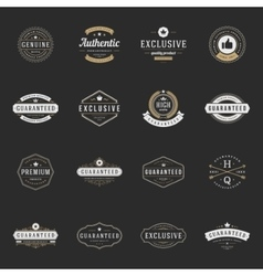 Retro Vintage Premium Quality Labels set vector image