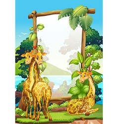 Border design with three giraffes in the park vector image