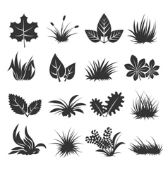 Leaves and grass icons vector image vector image