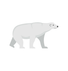 arctic bear icon flat style vector image