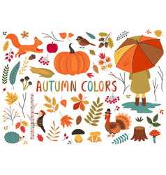 basic rgbset isolated autumn colorful elements vector image