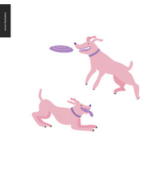 dog in the park vector image