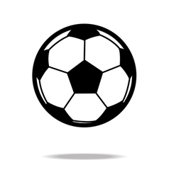 football icon vector image