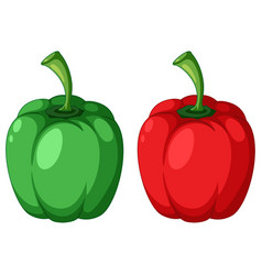 Green and red capsicum vector