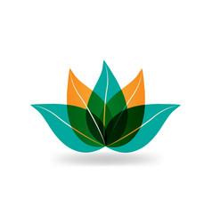 lotus plant icon vector image