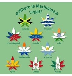 marijuana leaves with international flags vector image