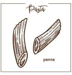 Pasta penne chalk sketch icon for italian cuisine vector