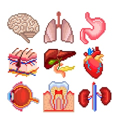 Pixel human body parts icons set vector