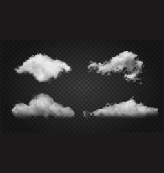 realistic fluffy white textured clouds on black vector image