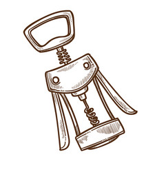 winemaking industry corkscrew or bottle opener vector image