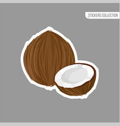 cartoon fresh coconut isolated sticker vector image