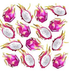 Dragon fruit pattern delicious exotic vector