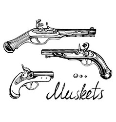 Muskets set different guns vector