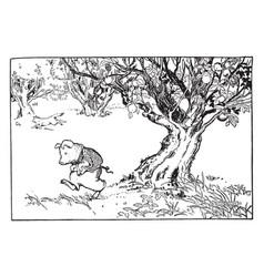 Pig walking away from fruit tree vintage vector