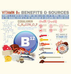 Vitamin b12 benefits vector