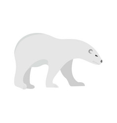 walk of polar bear icon flat style vector image