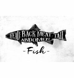 fish cutting scheme vector image