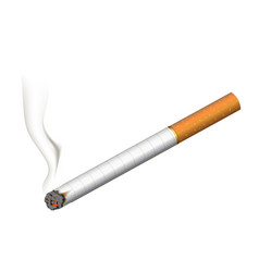 realistic burning cigarette on white vector image vector image