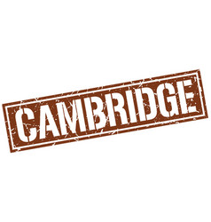 Cambridge brown square stamp vector