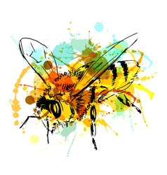 Colored hand sketch bee vector image