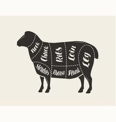 Cut meat lamb poster butcher diagram and vector
