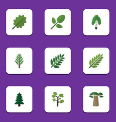 Flat icon bio set of leaves jungle park and vector